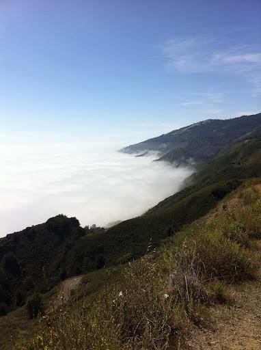 Above the clouds at Mt. Tamalpais, California
